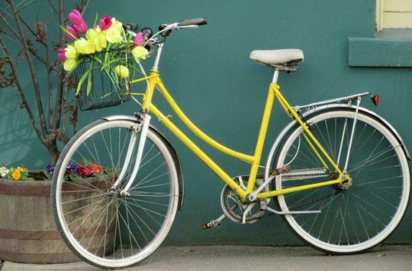 Rüyada bisiklet sürmek: Rüya Tabirleri Yorumları