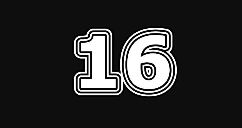 16 sayısının anlamı