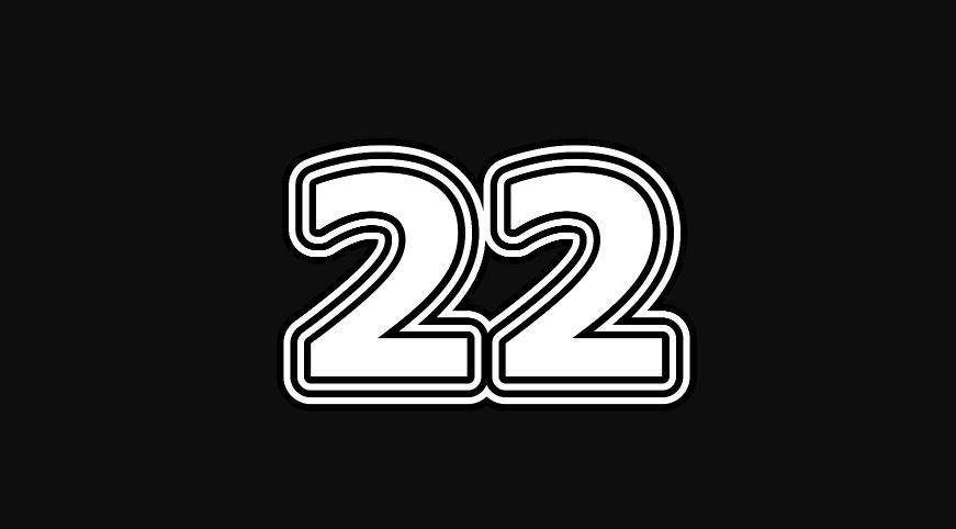 22 sayısının anlamı