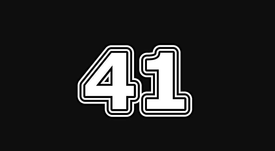 41 sayısının anlamı