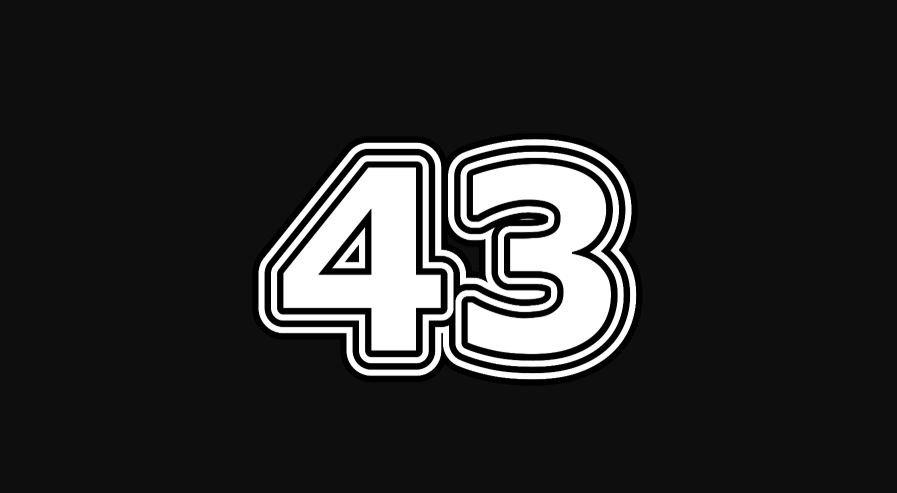 43 sayısının anlamı
