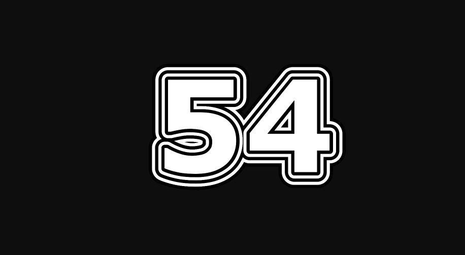 54 sayısının anlamı