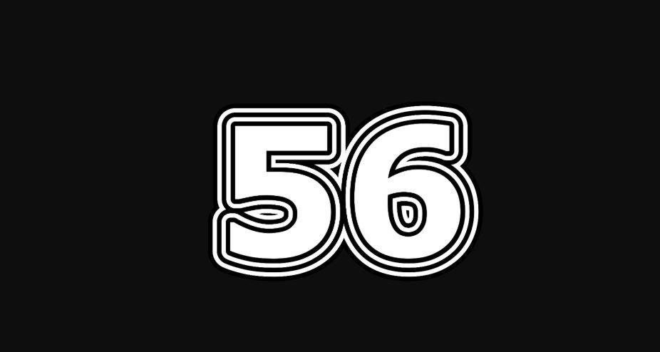 56 sayısının anlamı